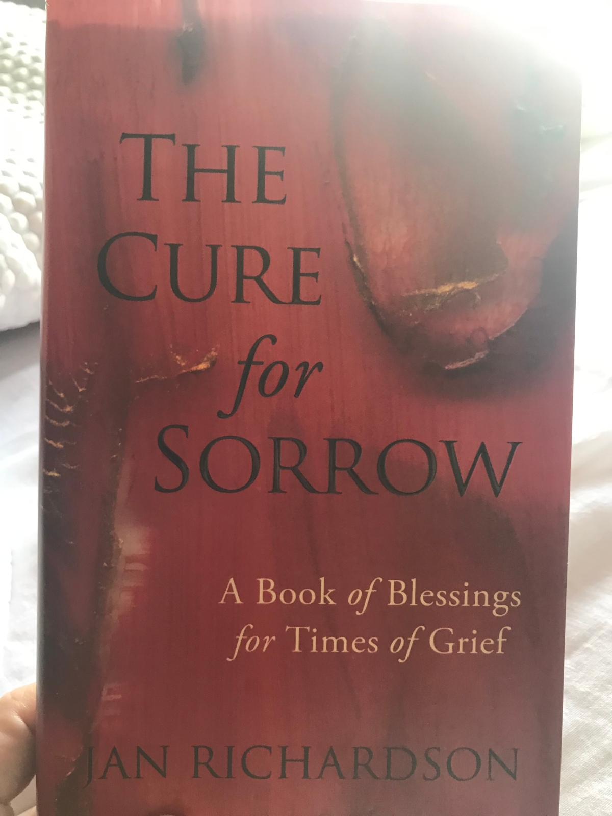 Book Review: The Cure for Sorrow